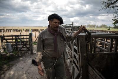 Argentinien - Cowboy